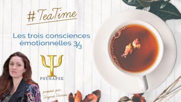 consciences emotionnelles 3-3